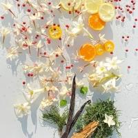 ? LITTLE RIDDLE 🌿⠀ What do pink pepper, bergamot, tangerine, coriander, jasmine, moss and vanilla have in common? They have come together to offer you a new, highly invigorating unisex fragrance: EDENFALLS... To be discovered on February 26th !⠀ ? PETITE DEVINETTE 🌿⠀ Le poivre rose, la bergamote, la mandarine, la coriandre, le jasmin, la mousse et la vanille, qu'ont-ils en commun ? Ils sont réunis pour vous offrir un nouveau parfum unisexe hautement revigorant : EDENFALLS... À découvrir le 26 février !⠀ •⠀⠀⠀⠀⠀⠀⠀⠀⠀ •⠀⠀⠀⠀⠀⠀⠀⠀⠀ •⠀⠀⠀⠀⠀⠀⠀⠀⠀ #mmicallef #micallefnewperfume #parfumsmmicallefedenfalls #parfumsmicallef #newfragrance #EdenFalls #nicheperfume #luxuryperfume #perfume #pinkpepper #mousse #micallefnewexperience #jasmine #jewelcollection #bergamot #luxuryfragrance #tangerine #fragrance #coriander #nichefragrance #nicheperfume #vanilla #newperfume #eaudeparfum #exclusivity #emotion #nicheperfume #ArtandPerfume #sotd #mmicallefsavethedate